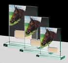 Personalised Horse Equestrian Jade Glass Award Engraved Trophy