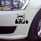 Grumpy Angry Cat Decals Sticker For Car Van Bumper Window Sticker Decal MI
