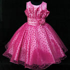 Hot Pink Communion Christmas Party Flower Girls Dresses SIZE 2-3-4-5-6-7-8-9-10T