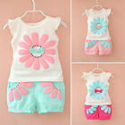 Summer Baby Girls Kids Floral T-Shirt Tops+Shorts Pants 2Pcs Outfits Clothes Set