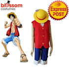 K206 One Piece Monkey D Luffy Cosplay Anime Fancy Dress Costume V est Pants Hat