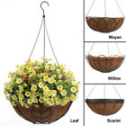 Arcadia Hanging Planter Coco Fiber Lined Plant Flower Black Wire Metal Basket