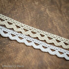 Cotton Lace Trim, Ribbon - 10mm - White or Cream - Craft, Sewing