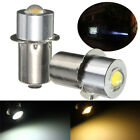 P13.5S PR2 1W Warm/White Led FlashLight Bulb High Brightness Lamps 90lm LAJ