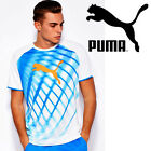 Puma IT EvoTRG Graphic Boys T-Shirt White Electric Blue Lemonade Tee Youth Sizes