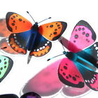 B181- Butterflies Weddings Crafts, Cake Topper Decorations Cards