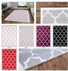 Large Modern Geometric Trellis Thin Carpet Contemporary Grey Soft Area Rug White