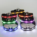 Pet Puppy Dog LED Light Glitter Flare Safety Waterproof Durable Rope Collar JR
