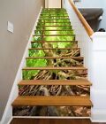 3D Tree Roots 624 Stair Risers Decoration Photo Mural Vinyl Decal Wallpaper UK