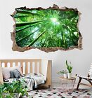 3D Bamboo Forest 12 Wall Murals Wall Stickers Decal Breakthrough AJ WALLPAPER AU