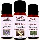 Roman Chamomile 100% Pure Essential Oil Therapeutic Grade Buy 3 Get 1  5ml-50ml
