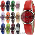 NEW LADIES Fashion Watch EASY READ BOLD Numbers PICADOR