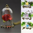 Chain Beauty and the Beast Real Rose Dried Flower Glass Bottle Necklace Pendant