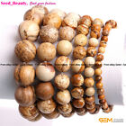 "Natural Picture Jasper Stone Beads  Healing Elastic Bracelet 7"" with Gift Box"
