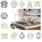 Irregular Glass Geometric Terrarium Box Tabletop Succulent Plant Planter - PICK