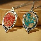 Handmade Natural Dried Flower Bottle Glass Pendant Necklace Women Jewelry Gift