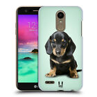 Best LG Dacs - HEAD CASE DESIGNS POPULAR DOG BREEDS HARD BACK Review