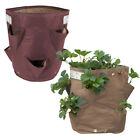 Bloembagz 9.5 Gallon Strawberry Grow Bag Recycled Collapsible Fabric Planter
