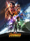 AVENGERS Infinity War Autograph POSTER Signed by 6 of Cast Rare Quality Print