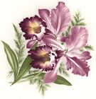 Purple Pink Orchid Flower Select-A-Size Ceramic Waterslide Decals Xx image