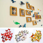 3d Stickers 12pcs Wall Kid Decal Pvc Room Diy Decoration Decor Butterfly Home