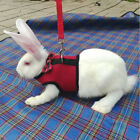 Cat Pet Accessories For Small Animal Rabbit Leash Chest Strap Mesh Vest Leashes for sale  Shipping to Canada