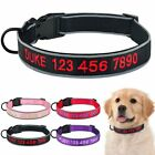 Nylon Personalised Embroidered Dog Collar Male Female Puppy Collars Adjustable