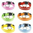 USB Rechargable LED Dog Pet Collar Flashing Luminous Safety Light Up Nylon 7 COL