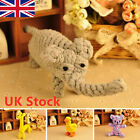 Dog Tough Strong Chew Knot Healthy Teeth Toy Teddy Pet Puppy Bear Cotton Rope UK