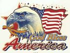 Patriotic Flag Eagle God Bless America Select-A-Size Ceramic Waterslide Decals X image