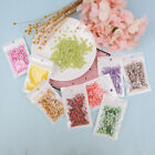 10g Fruit slice clay sprinkles for filler supplies fruit mud decoration for k I2 image