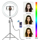 """12"""" RGB LED Ring Fill Light With Phone Holder For Live Video Dimmable Makeup C2"""