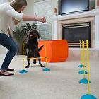 Outward Hound ZipZoom Dog Agility Training Obstacle Course