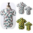 Boys Pineapple Printed Shirts Toddlers Short Sleeves Button Down Tops Beachwear