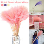 10 Pcs Reed Flowers Bunch Dried Pampas Wedding Bulrush Bouquets Home Decor Au
