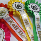 10 Well Done Horse Rosettes, Horse Show rosettes, pony club rosettes