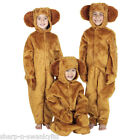 Boys Girls Honey Bear Book Day Animal Fancy Dress Costume Outfit 4-12 years