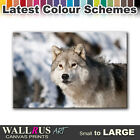Wolf Wildlife ANIMALS  Canvas Print Framed Photo Picture Wall Artwork WA