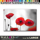 Poppy Field Flowers FLORAL  Canvas Print Framed Photo Picture Wall Artwork WA