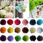 "30 Tissue Paper Pom Poms Wedding Birthday Party Home Decoration Favor 8""/10""/15"""