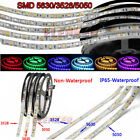 Super Bright 5m 3528 3014 5050 5630 7020 Smd 300 600 Led Flexible Strip Light Us