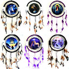 Canvas Dream Catcher / Pictured Fantasy Wall Art / Plaque with feathers & beads