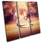 Droplet concept abstract TREBLE CANVAS WALL ART Picture Print VA