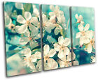 Cherry Blossom Teal Floral TREBLE CANVAS WALL ART Picture Print VA