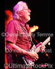 John Mayall Photo Color Concert Photo by Marty Temme 1 Blues