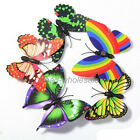 10pcs New Butterfly Fridge Magnet Room Car Wall Decorations Magnetic Multicolour