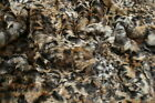 Super Luxury Faux Fur Fabric Material - HYENA