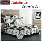 ANTOINETTE White Coverlet with Pillowcase(s), Eurocases and Cushion - SINGLE DOU