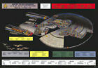 "STAR TREK TNG - TV POSTER (NCC-1701-D - CUTAWAY / SCHEMATICS) (40 X 27"") on eBay"