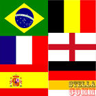 Large 5ft x 3ft World Cup Brazil Brasil 2014 National Team Country Flags Banners